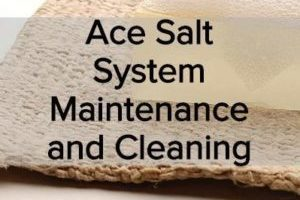 Article thumbnail for salt system cleaning